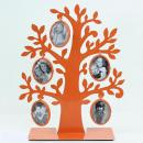 Foto strom oranžový